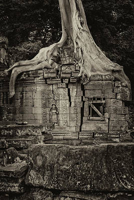 Poster featuring the photograph Roots In Ruins 5, Ta Prohm, 2014 by Hitendra SINKAR
