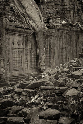 Poster featuring the photograph Roots In Ruins 6, Ta Prohm, 2014 by Hitendra SINKAR