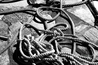 Rope Infrared Poster by John Rizzuto