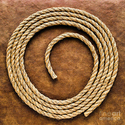 Rope On Leather Poster by Olivier Le Queinec