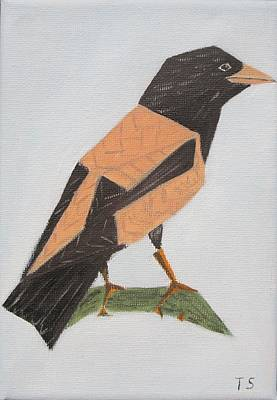 Rose-coloured Starling Poster