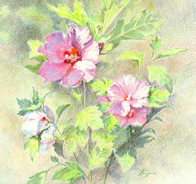 Poster featuring the painting Rose Of Sharon by Vikki Bouffard