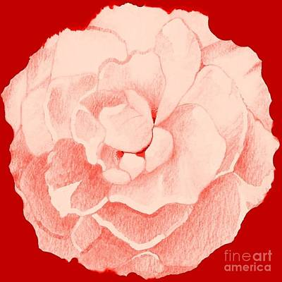 Rose On Red Poster by Helena Tiainen