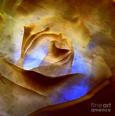 Poster featuring the photograph Rosebud - Till We Meet Again by Janine Riley