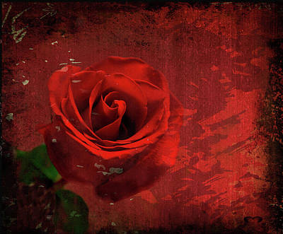 Poster featuring the photograph Roses Are Still Red by Bonnie Willis