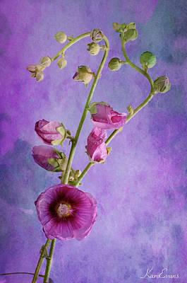 Roses  Poster by Karo Evans
