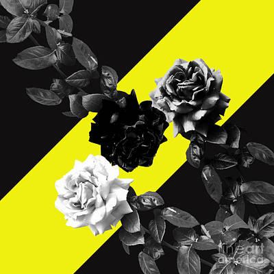 Roses Versus Yellow Poster