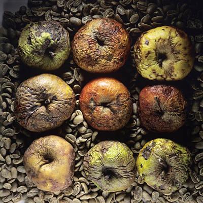 Rotten Apples Poster by Bernard Jaubert