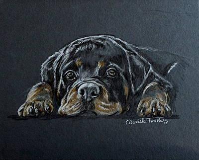 Rottweiler Poster by Daniele Trottier