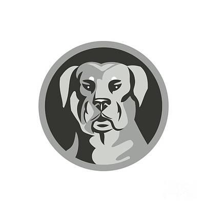 Rottweiler Guard Dog Head Circle Black And White Poster by Aloysius Patrimonio