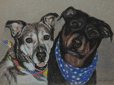 Rottweiler, Shepherd Mix Poster by Sun Sohovich