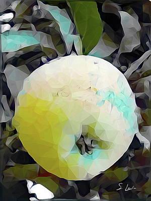 Round Fruit Poster