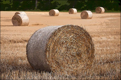 Round Hay Bales In A Swiss Field Poster
