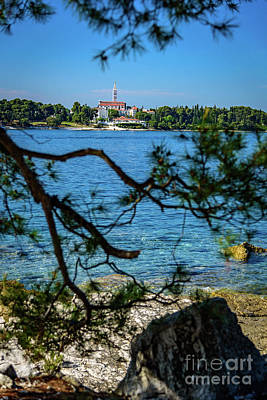 Rovinj Seaside Through The Adriatic Trees, Istria, Croatia Poster