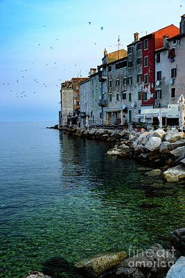 Rovinj Venetian Buildings And Adriatic Sea, Istria, Croatia Poster