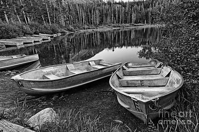 Row Boat Lake Poster by Jamie Pham