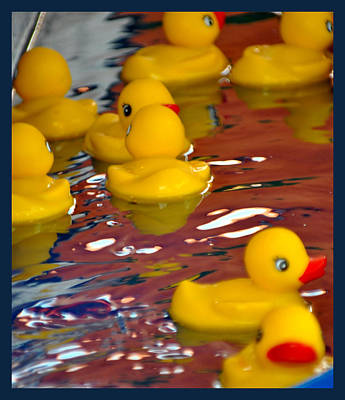 Poster featuring the photograph Rubber Duckies by Laura DAddona