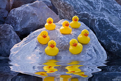 Poster featuring the photograph Rubber Ducks In The Wild by Shelly Stallings