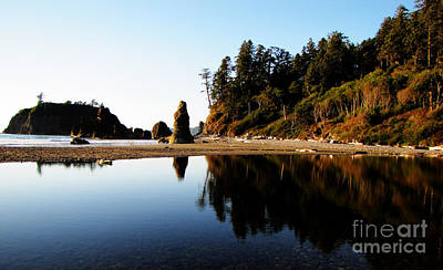 Ruby Beach Reflections Poster