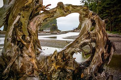 Ruby Beach Driftwood 2007 Poster
