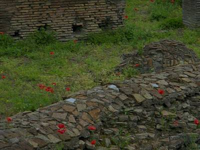 Poster featuring the photograph Ruins In Rome by Manuela Constantin