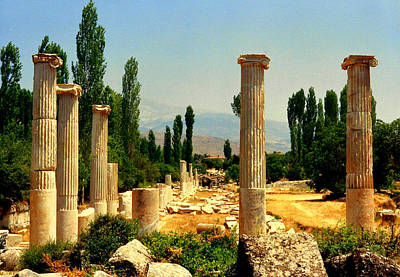 Ruins Of  Aphrodisias Poster by Lou Ann Bagnall
