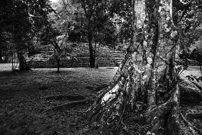 Poster featuring the photograph Ruins Of Tikal by Yuri Santin