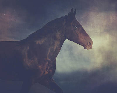 Running Horse Artwork Poster