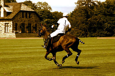 Running Polo Horse Poster