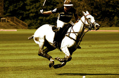 Running Polo Horses Poster