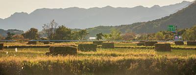 Rural Area Poster by Hyuntae Kim