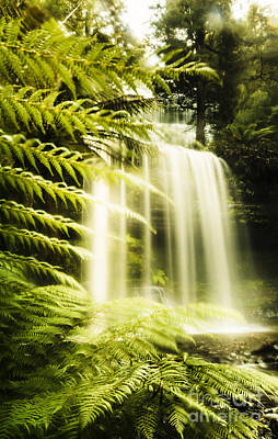 Russell Falls Background Poster by Jorgo Photography - Wall Art Gallery