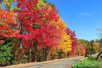 Poster featuring the photograph Russellville Road Fall Colors by Sven Kielhorn