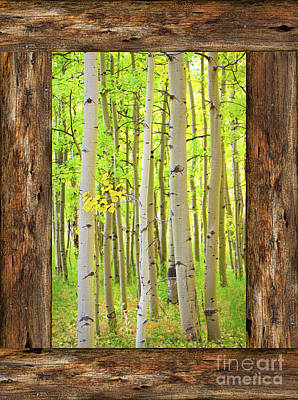 Rustic Cabin Window Into The Woods Portrait View  Poster by James BO Insogna