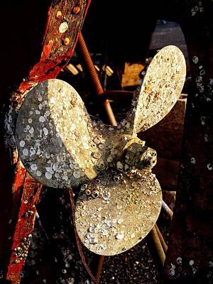 Poster featuring the photograph Rustic Propeller by Margie Avellino