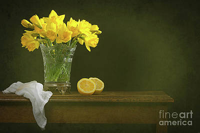 Rustic Still Life With Daffodils Poster by Amanda Elwell