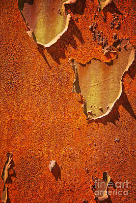 Rusty Old Metal Background Poster by Sophie McAulay
