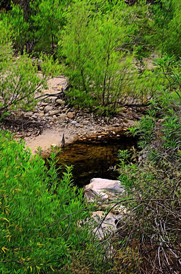 Poster featuring the photograph Sabino Canyon Op44 by Mark Myhaver