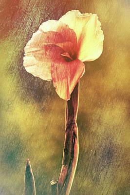 Sacred Lotus Series #6 Poster