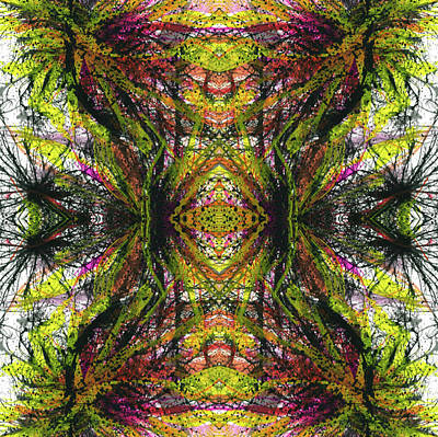 Sacredness Of Interconnectedness #1512 Poster by Rainbow Artist Orlando L aka Kevin Orlando Lau