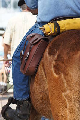 Saddle Bags N' Slicker Poster