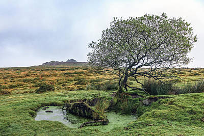Saddle Tor - Dartmoor Poster