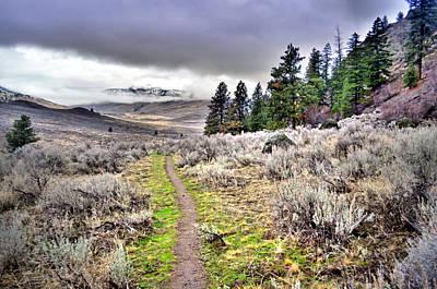 Sage Brush Along The White Lake Trail Poster