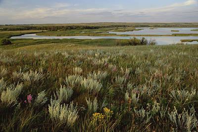 Sage Prairie And Marsh In Upper Souris Poster by Gerry Ellis