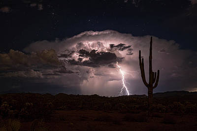 Poster featuring the photograph Saguaro Lit Up By The Lightning  by Saija Lehtonen