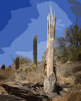 Saguaro Skeleton Poster