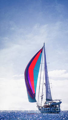Poster featuring the photograph Sail Away by Scott Kemper