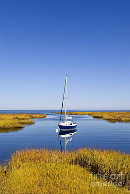Sailboat In Salt Marsh Poster by John Greim