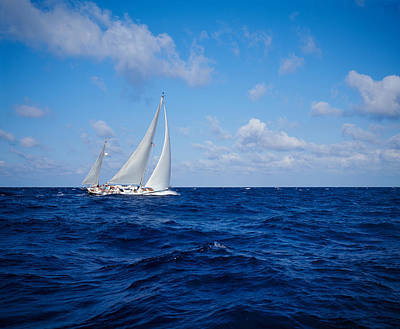 Sailboat In The Sea, Bahamas Poster by Panoramic Images