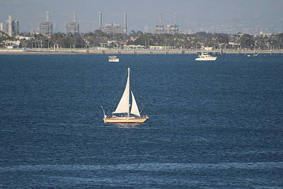 Sailboat On The Pacific In Long Beach Poster